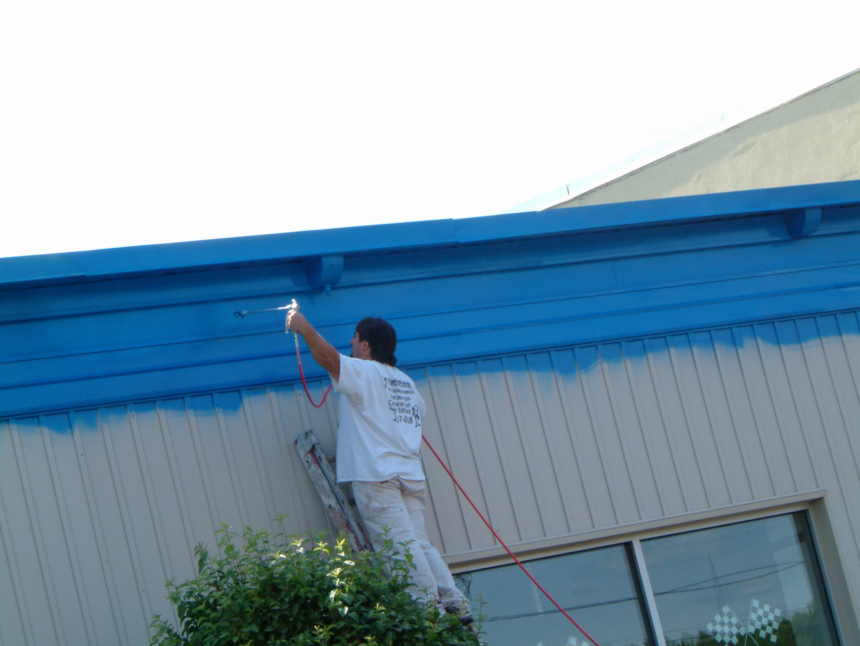 Commercial painting contractor utica for Commercial mural